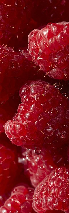 20200821 About Texture Raspberry