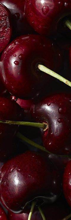 20200821 Camino Texture Cherry