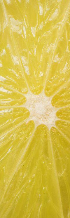 20200821 Lost Farm Texture Lemon