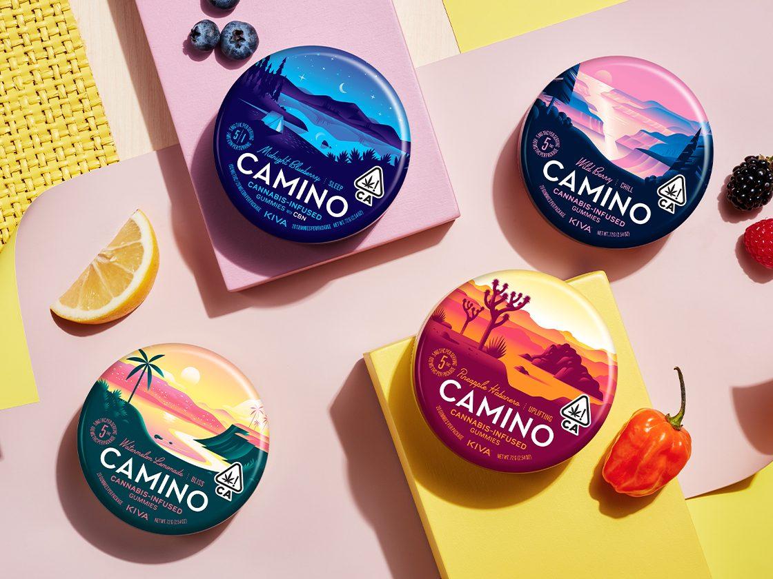 20200821 Products Camino Family