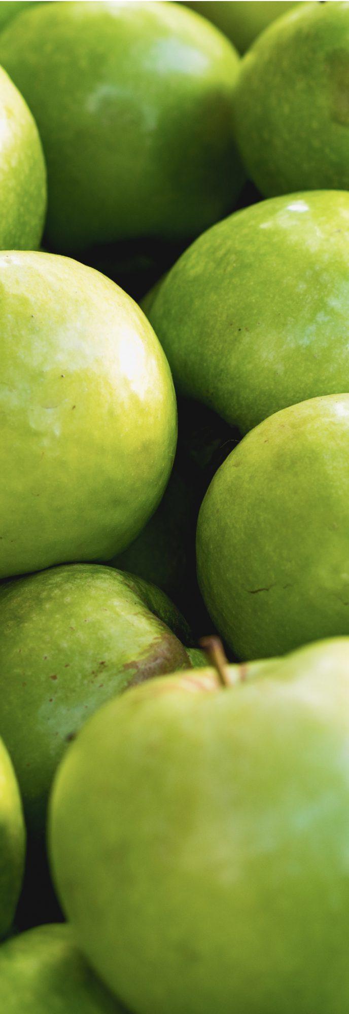 Kiva Website Lost Farm Sour Apple Template Texture
